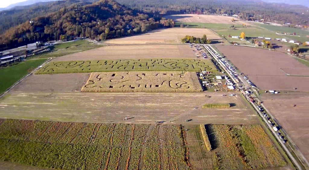 fort-vannoy-farms-corn-maze
